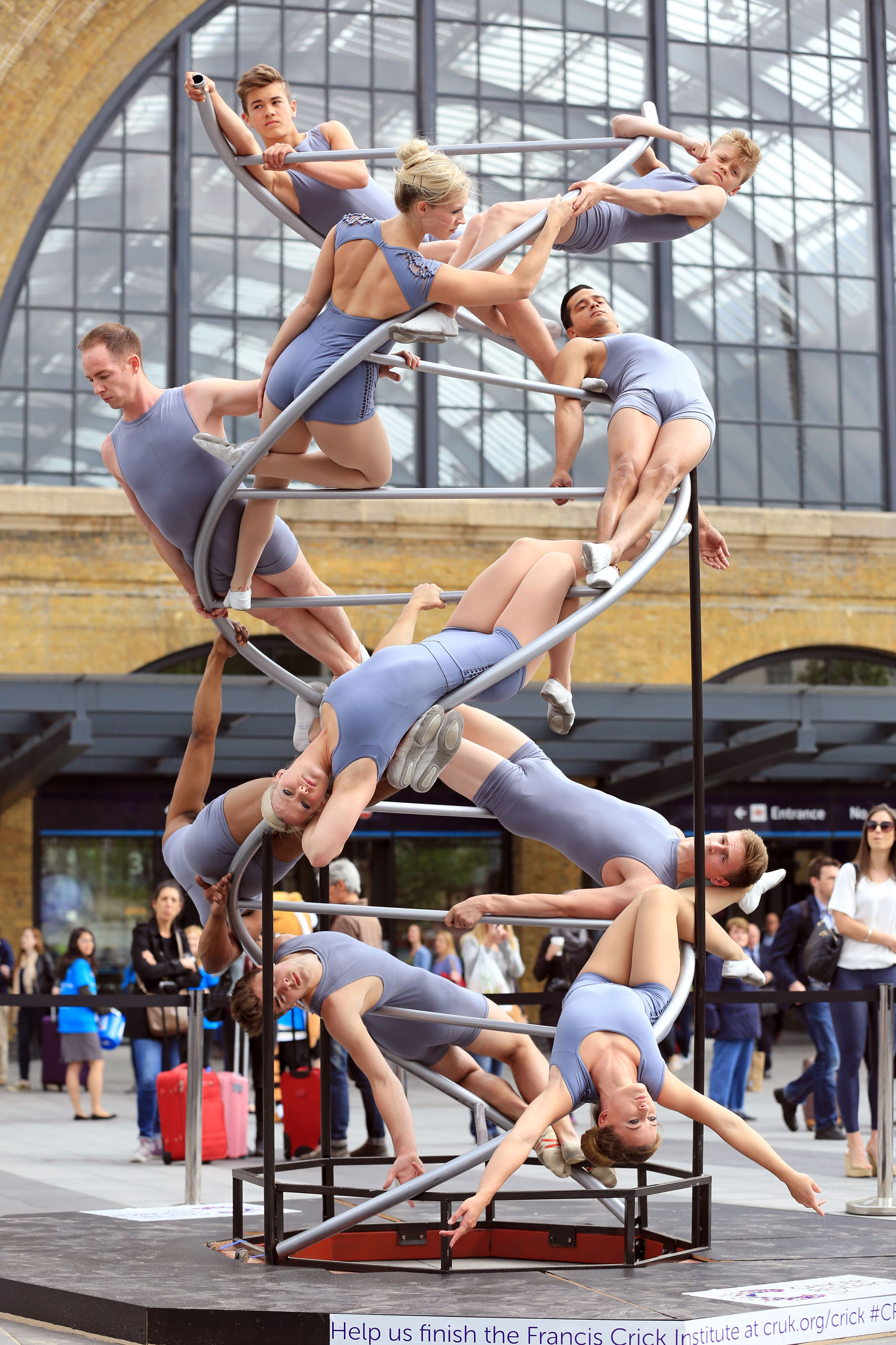 Cancer Research acrobats